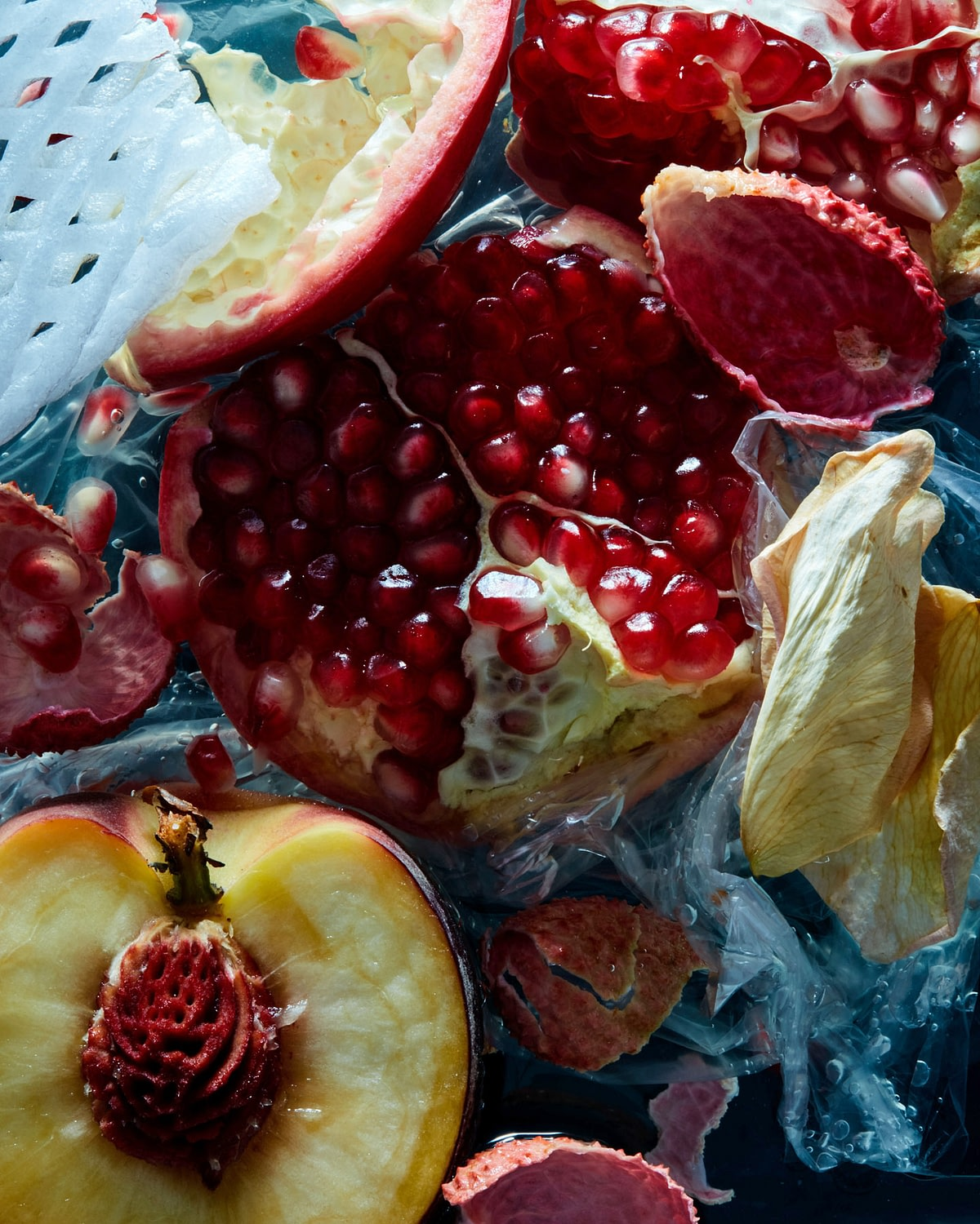 0819_Fruit_Test2603