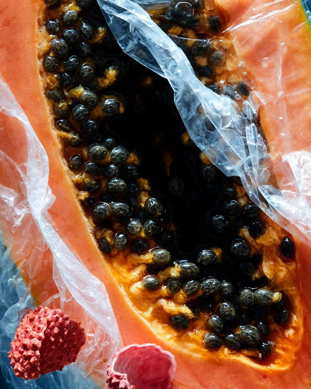 0819_Fruit_Test2587-2